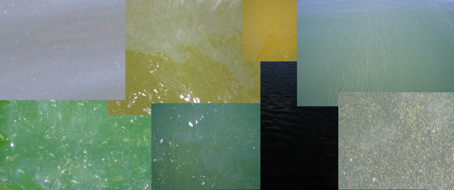 Fig 2. Examples of different optical water types. Source Tartu Observatory (TO) field work image collection.
